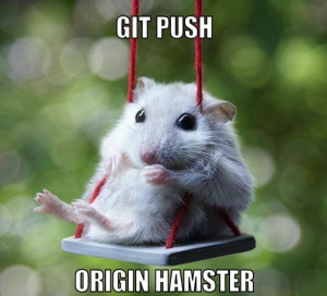 git push origin hamster